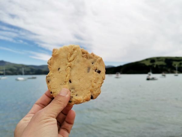 Akaroa Dolphins homemade cookie